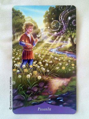 Oracle de la Magie des Fleurs de Tess Whitehurst et Anne Wertheim - Graine d'Eden Développement personnel, spiritualité, tarots et oracles divinatoires, Bibliothèques des Oracles, avis, présentation, review