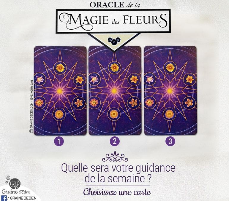 2 au 8 janvier 2017 - Votre guidance de la semaine avec l'Oracle de la Magie des Fleurs de Tess Whitehurst et Anne Wertheim - Graine d'Eden Tarots et Oracles divinatoires - avis, review, présentations