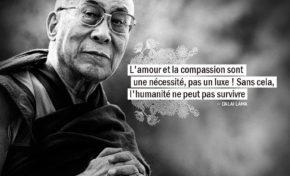 L'amour et la compassion sont une nécessité, pas un luxe ! Sans cela...
