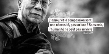 L'amour et la compassion sont une nécessité, pas un luxe ! Sans cela, l'humanité ne peut pas survivre. - LE DALAI LAMA - Graine d'Eden Citation