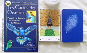 Les Cartes des Oiseaux de Jane Toerien et Joyce Van Dobben