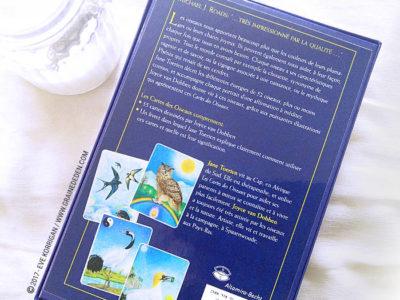 Les Cartes des Oiseaux de Jane Toerien et Joyce Van Dobben - Graine d'Eden Développement personnel, spiritualité, tarots et oracles divinatoires, Bibliothèques des Oracles, avis, présentation, review
