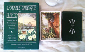 L'Oracle Druidique des Plantes de Philip et Stephanie Carr-Gomm