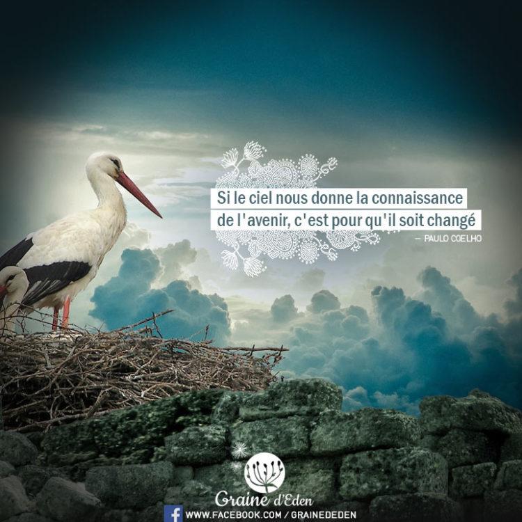 Si le ciel nous donne la connaissance de l'avenir, c'est pour qu'il soit changé. - PAULO COELHO - Graine d'Eden Citation
