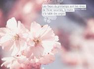 Les fleurs du printemps sont les rêves de l'hiver racontés ...
