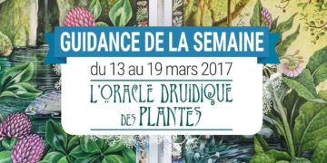 13 au 19 mars 2017 – Votre guidance de la semaine avec L'Oracle Druidique des Plantes de Philip et Stephanie Carr-Gomm - Graine d'Eden Tarots et Oracles divinatoires - avis, review, présentations