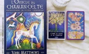 L'Oracle du Chaman Celte de John Matthews