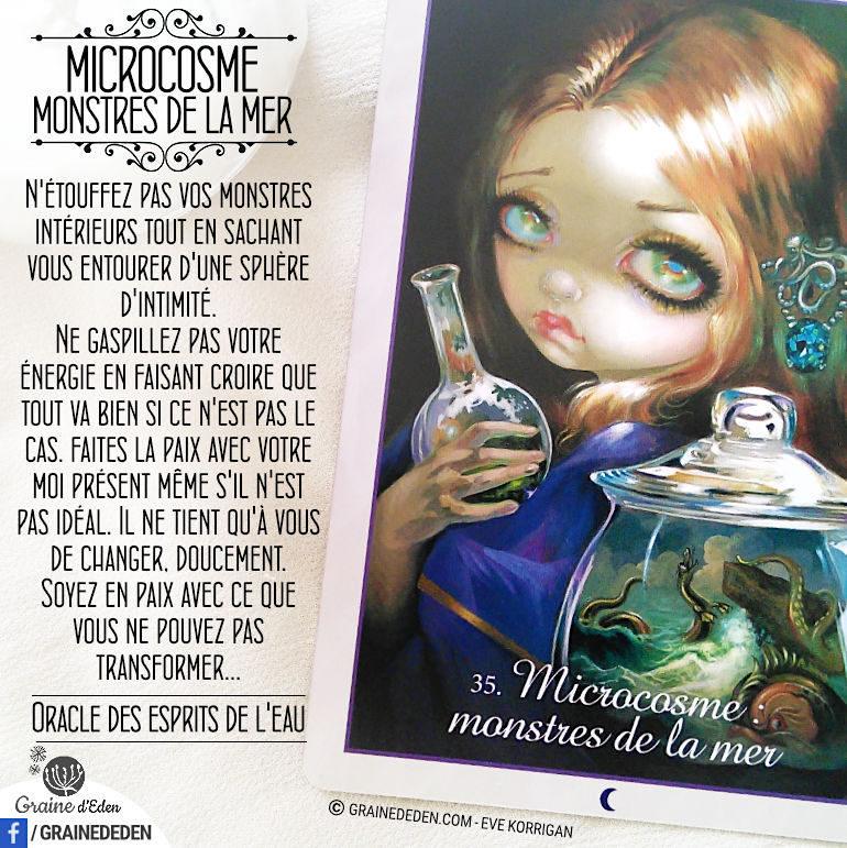 Microcosme – Monstres de la Mer