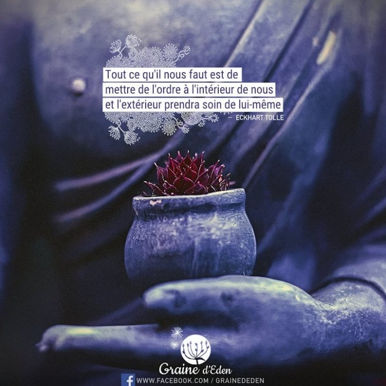 Tout ce qu'il nous faut est de mettre de l'ordre à l'intérieur de nous et l'extérieur prendra soin de lui-même. ECKHART TOLLE - Graine d'Eden Citation