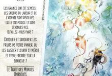 Le Tarot des Mondes Oniriques de Stephanie Pui-Mun Law et Barbara Moore - Graine d'Eden Développement personnel, spiritualité, tarots et oracles divinatoires, Bibliothèques des Oracles, avis, présentation, review