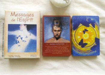 Messages de l'Esprit cartes Oracle de John Holland - Graine d'Eden Développement personnel, spiritualité, tarots et oracles divinatoires, Bibliothèques des Oracles, avis, présentation, review , revue