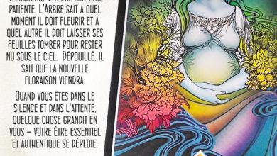 Tarot Osho Zen - carte La Patience - Graine d'Eden Développement personnel, spiritualité, tarots et oracles divinatoires, Bibliothèques des Oracles, avis, présentation, review
