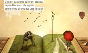 Ne confonds pas ton chemin avec ta destination. Ce n'est pas parce que c'est orageux ...