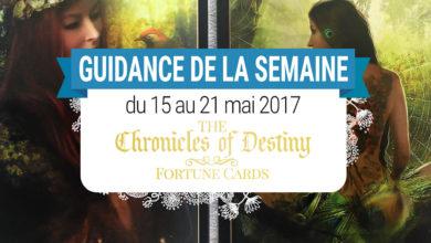 15 au 21 mai 2017 - Votre guidance de la semaine avec les Cartes The Chronicles of Destiny Fortune Cards de Josephine Ellershaw - Graine d'Eden Tarots et Oracles divinatoires - avis, review, présentations