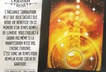 Les Cartes Oracle Les Anges de L'Atlantide de Stewart Pearce et Richard Crookes - Carte Sandalphon Evolution - Graine d'Eden Développement personnel, spiritualité, tarots et oracles divinatoires, Bibliothèques des Oracles, avis, présentation, review , revue