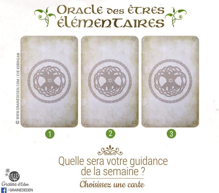 26 juin au 2 juillet 2017 - Votre guidance de la semaine avec les Cartes Oracle des êtres élémentaires de Joëlle Chautems et Jessica Maroulis - Graine d'Eden Tarots et Oracles divinatoires - avis, review, présentations