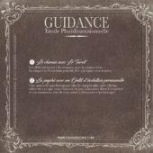 Guidance Pluridimensionnelle