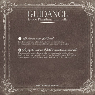 Guidance Pluridimensionnelle