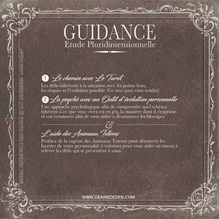 Guidance Pluridimensionnelle et Animaux Totems