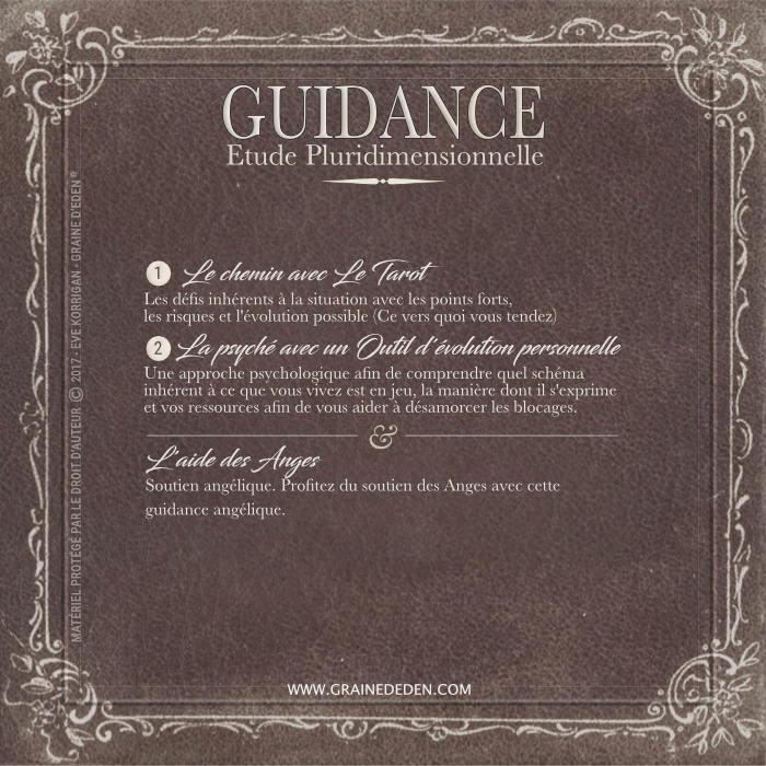 Guidance Pluridimensionnelle et Soutien Angélique