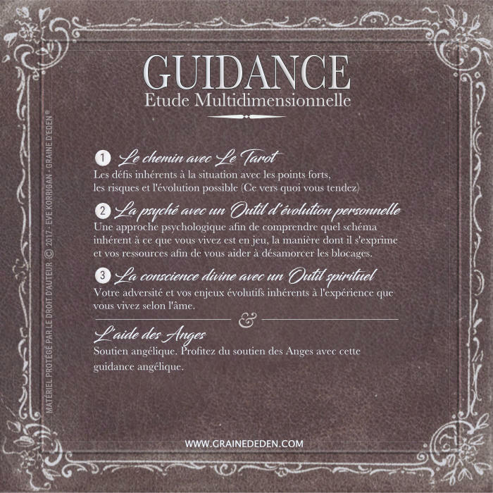 Guidance Multidimensionnelle Complète et Soutien Angélique