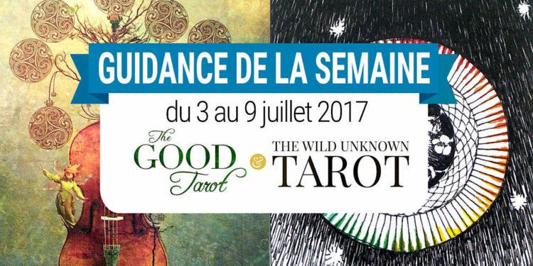 3 au 9 juillet 2017 - Votre guidance de la semaine avec The Good Tarot de Colette Baron-Reid et The Wild Unknown Tarot de Kim Krans - Graine d'Eden Tarots et Oracles divinatoires - avis, review, présentations