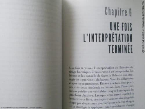 Review Le Tirage Karmique de Sébastien Michel