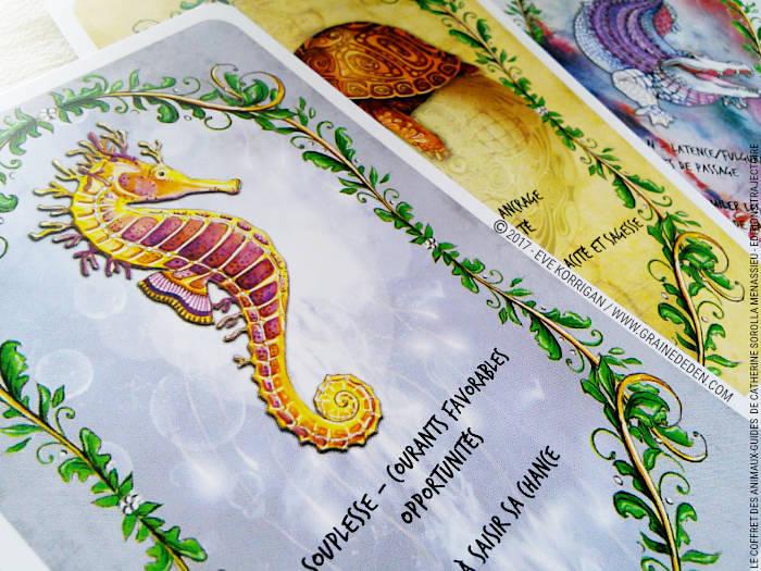 Le Coffret des Animaux-Guides de Catherine Sorolla Menassieu - L'Officiel - Graine d'Eden Développement personnel, spiritualité, tarots et oracles divinatoires, Bibliothèques des Oracles, avis, présentation, review , revue