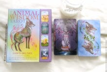 The Animal Wisdom Tarot de Dawn Brunke et Ola Liola - Graine d'Eden Développement personnel, spiritualité, tarots et oracles divinatoires, Bibliothèques des Tarots, avis, présentation, review , revue