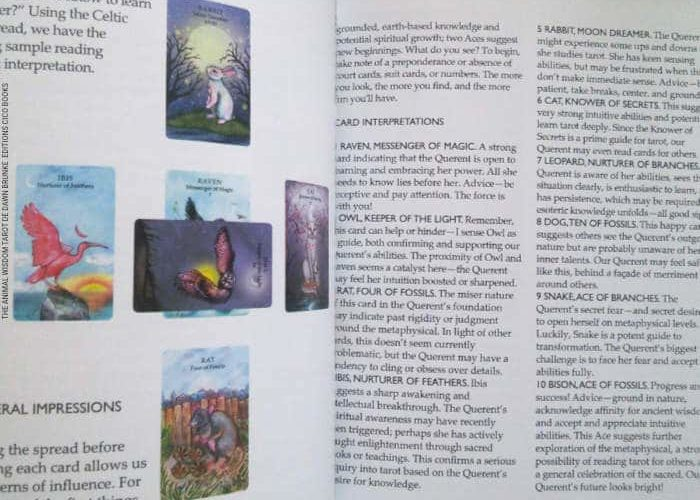 The Animal Wisdom Tarot de Dawn Brunke et Ola Liola - Graine d'Eden Développement personnel, spiritualité, tarots et oracles divinatoires, Bibliothèques des Tarots, avis, présentation, review , revue