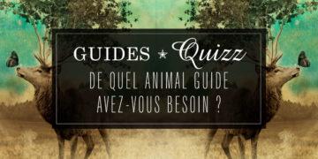 Quizz : De quel Animal-Guide avez-vous besoin ? Répondez à ces 7 questions pour découvrir l'Animal-guide qui pourra vous aider dans votre situation actuelle et entrez en contact avec lui pour découvrir sa sagesse et ses conseils.