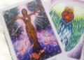 Graine d'Eden Développement personnel, spiritualité, tarots et oracles divinatoires, Bibliothèques des Oracles, avis, présentation, review tarot oracle , revue tarot oracle