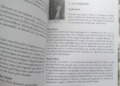 Le Tarot de l'Amour de Denise Jarvie et Toni Carmine Salerno Review - Graine d'Eden Développement personnel, spiritualité, tarots et oracles divinatoires, Bibliothèques des Oracles, avis, présentation, review tarot oracle , revue tarot oracle