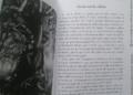 Review Le Tarot de la Magie Verte de Ann Moura et Kiri Ostergaard Leonard - Graine d'Eden Développement personnel, spiritualité, tarots et oracles divinatoires, Bibliothèques des Oracles, avis, présentation, review tarot oracle , revue tarot oracle