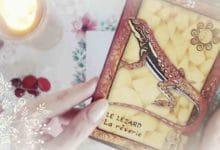 14 Septembre 2018 - Votre guidance du jour avec Oracle Messages de Votre Animal Totem - Graine d'Eden Développement personnel, spiritualité, tarots et oracles divinatoires, Bibliothèques des Oracles, avis, présentation, review tarot oracle , revue tarot oracle