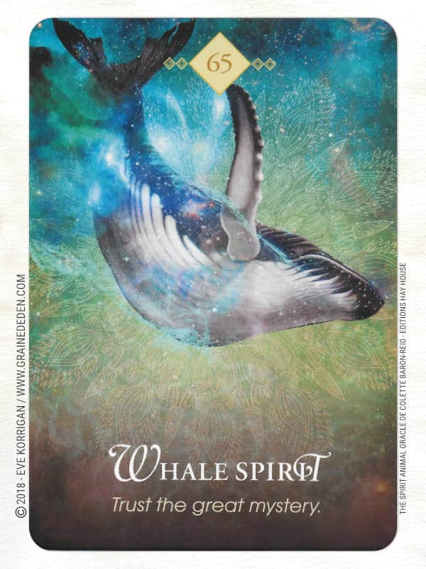 The Spirit Animal Oracle de Colette Baron-Reid et Jena DellaGrottaglia Review - Graine d'Eden Développement personnel, spiritualité, tarots et oracles divinatoires, Bibliothèques des Oracles, avis, présentation, review tarot oracle , revue tarot oracle