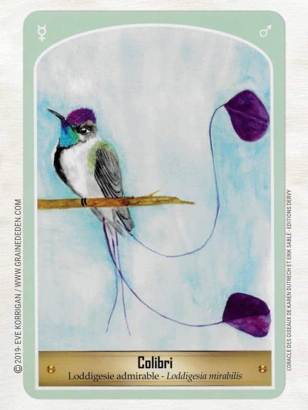oracle des oiseaux