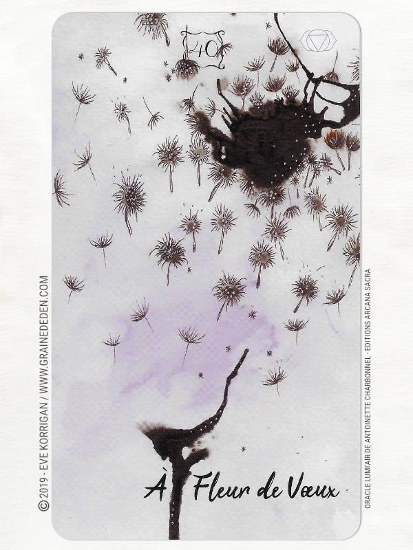 Oracle LumiAir de Antoinette Charbonnel review - Graine d'Eden Développement personnel, spiritualité, tarots et oracles cartes divinatoires, Bibliothèques des Oracles, avis, présentation, review , revue