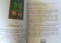 L'Oracle de l'Arbre de Vie de Karine Branco et Virginie Médium review et avis - Graine d'Eden Développement personnel, spiritualité, tarots et oracles cartes divinatoires, Bibliothèques des Oracles, avis, présentation, review , revue