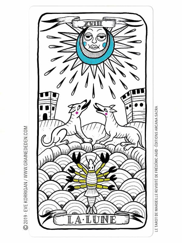 Le Tarot de Marseille Revisité de Frédéric Agid review et avis - Graine d'Eden Développement personnel, spiritualité, tarots et oracles cartes divinatoires, Bibliothèques des Oracles, avis, présentation, review , revue