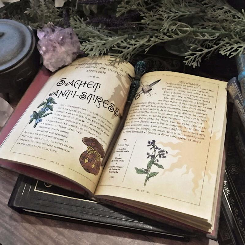 Le Petit Livre des Sortilèges de Nicola de Pulford