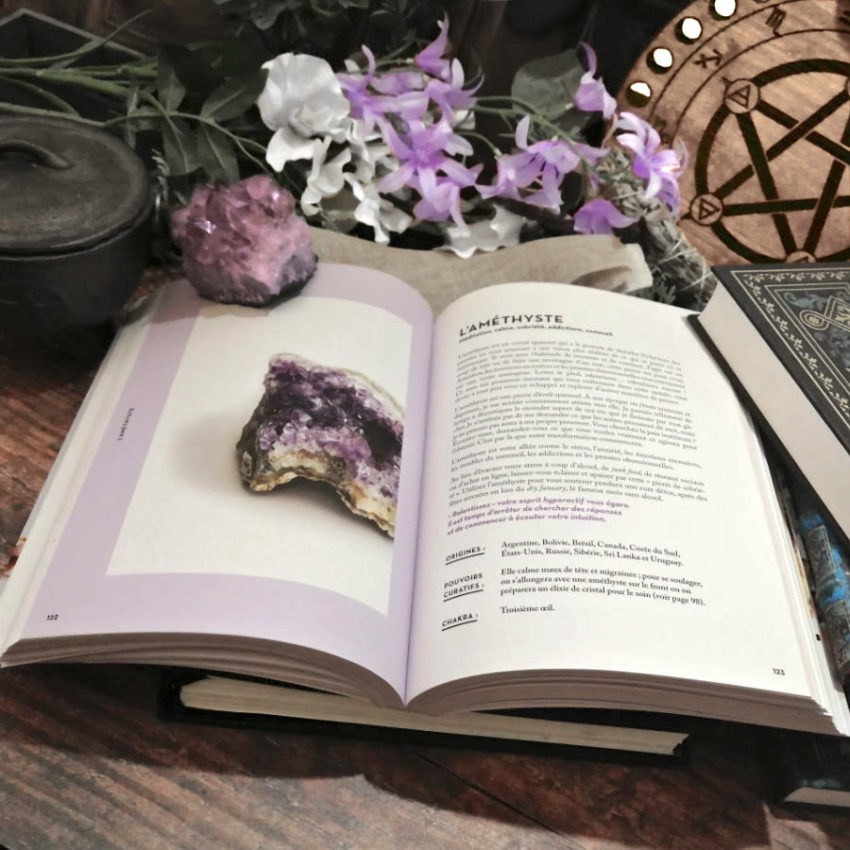 Cristaux livre de Tamara Driessen
